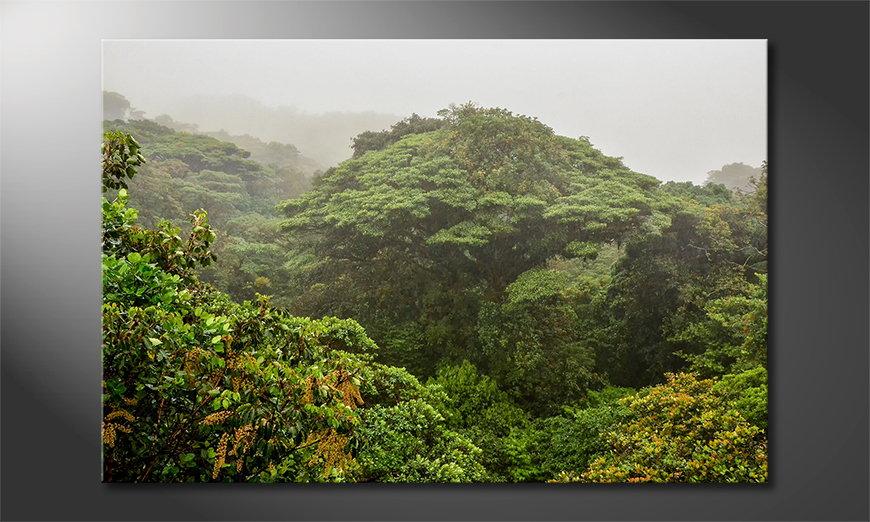 Das Leinwandbild Jungle