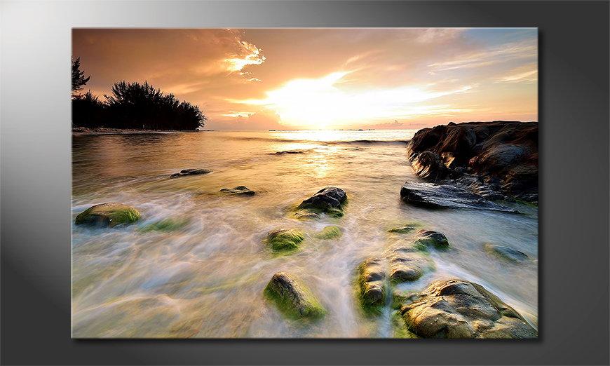 Das Leinwandbild Stoned Sunset