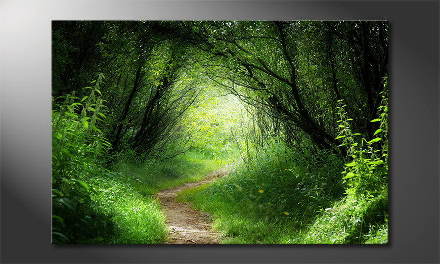 Das Leinwandbild Way into the Forest