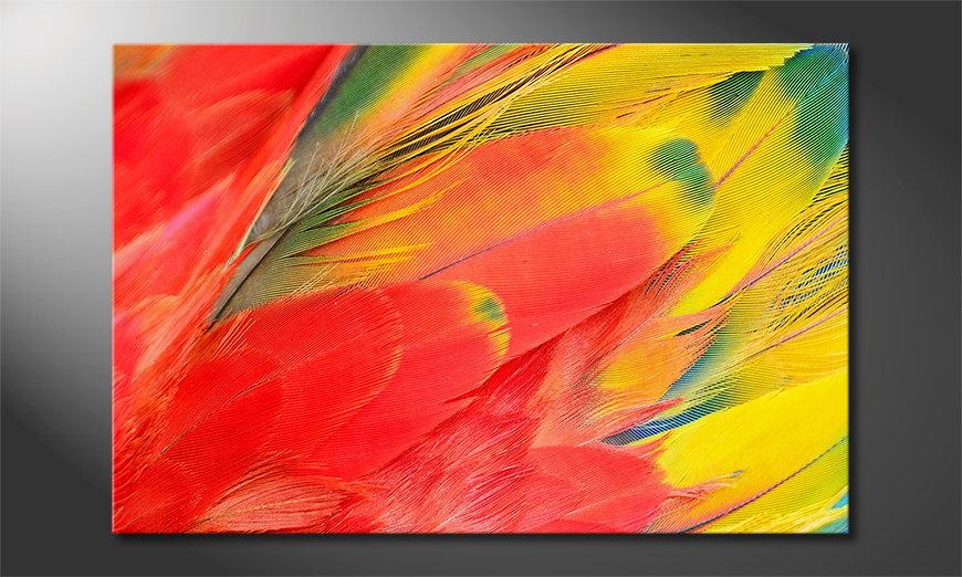 Das Wandbild Parrot Feathers