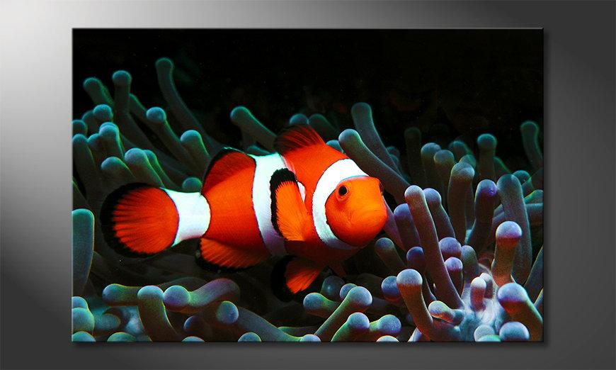 Das moderne Leinwandbild Nemo