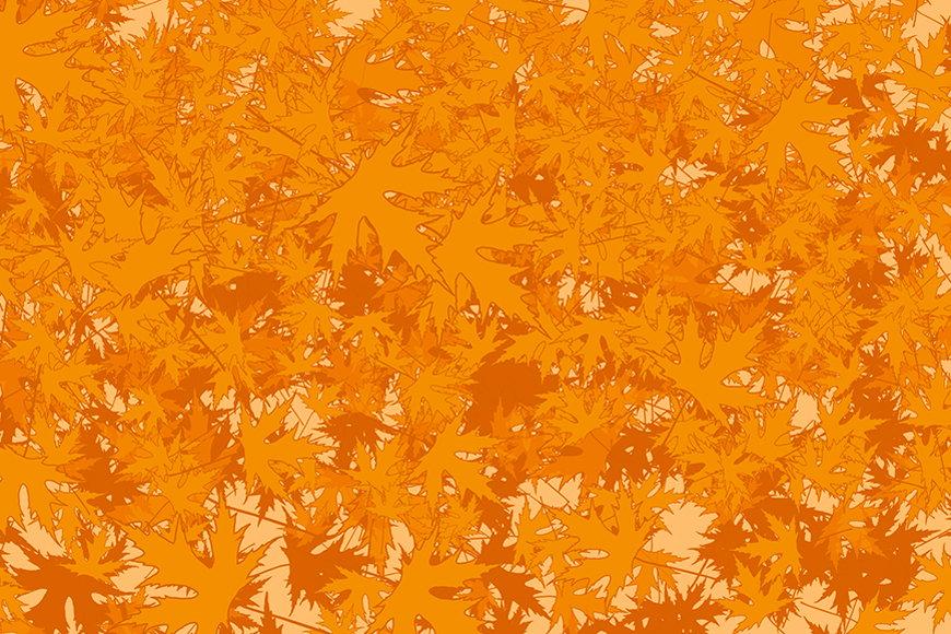 Vlies-Tapete Ahornblätter ab 120x80cm