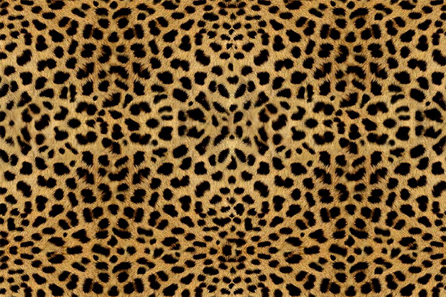 Vliestapete Gepard ab 120x80cm