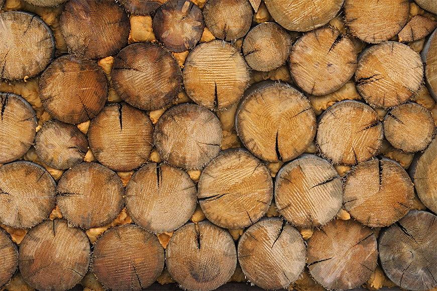 Vliestapete Wood Wall in 6 Größen